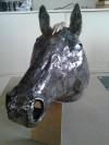 tete cheval (8)