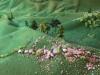 Maquette Alpage (10)